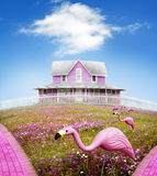 Dom na wzgórzu Obraz Stock
