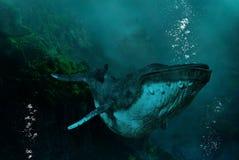 Surrealistyczny Podmorski Humpback wieloryb, natura ilustracja wektor