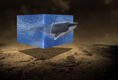 Surrealistyczny wieloryb, morze, ocean, pustynia Obraz Royalty Free