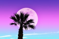 Surrel landscape in neon colors. Giant moon and palm tree stock images