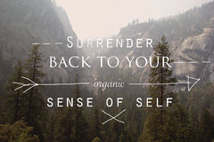 Surrender back to your Organic Sense of Self Stock Photo