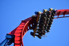 Surrender to speed as you dive straight down into a 70 mph Sheikra roller coaster whirl wind wit royalty free stock images