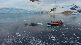Surret att närma sig yachten mot kusten Andreev arkivfilmer