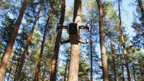 Surret med en kamera svävar i luften Quadcopter flyger ovanför jordningen i skogen lager videofilmer