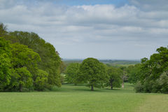 Surrey countryside. The beautiful surrey countryside showing trees and rolling hills Stock Image