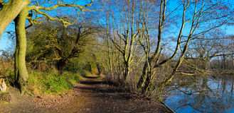 Surrey-Landschaft Lizenzfreies Stockfoto
