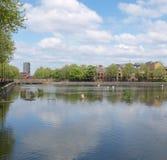 Surrey Water, London Stock Photos