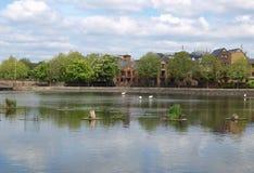 Surrey Water, London Royalty Free Stock Photos