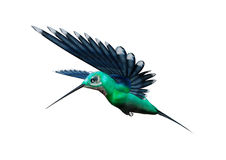 surrfågel för tolkning 3D på vit Arkivfoto