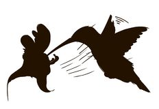 Surrfågelkontur isolerat vektor illustrationer