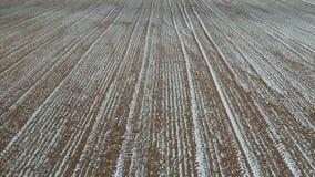 Surrfluga ovanför snöig tidigt fält för skörd för vårtid arkivfilmer