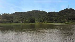 Surrflugor fastar över sjön in mot byggnad mot kullar