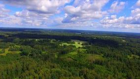 Surrflyg över de gröna skogarna stock video
