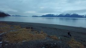 Surrflyg i Alaska lager videofilmer