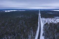 Surrfotografi av den vinterskogen och vägen royaltyfri bild