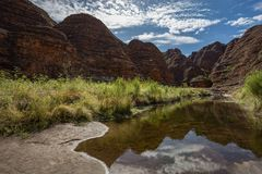 The walk into Catherdral Gorge, Purnululu, National Park. Surrounded each side by towering banded cliffs the walk during the Wet season can be difficult due to royalty free stock photography