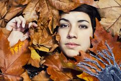 Surrounded by leaves Royalty Free Stock Photos