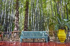 Pale blue chair in Majorelle garden, Morocco. stock images