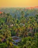 Surrounded by palm groves Maharaja Palace Royalty Free Stock Photos