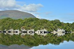 Country reflections on calm lake surface. Surrounding country reflections on completely calm surface of Muckross Lake in Ireland in morning light stock photos