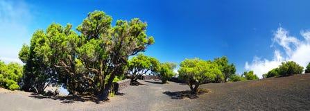 Surrounding of Mirador de Jinama, El Hierro, Spain Royalty Free Stock Image