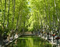 Plane trees and pond in Provence. Plane trees and pond square in Cucuron. Provence, France Royalty Free Stock Photography
