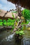 Surroundings Yang Bay waterfall in Vietnam Royalty Free Stock Image