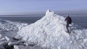 Surrsikt av den unga aktiva grabben som kör för att klättra till överkanten av glaciären med den pittoreska naturen av vinterhavs lager videofilmer