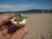 Surströmmingen tjänade som med den potatis-, kräm- och dillhållen i hand royaltyfri foto