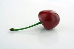 surt Cherry arkivfoto