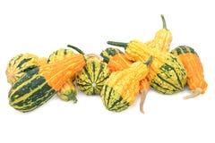 Surtido de calabazas ornamentales anaranjadas, verdes y amarillas Foto de archivo libre de regalías