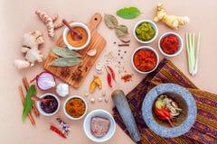 Surtido de comida tailandesa que cocina los ingredientes y la goma del po tailandés imágenes de archivo libres de regalías