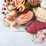Surtido de fuente sana de la proteína y de comida del culturismo Foto de archivo libre de regalías