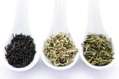 Surtido de hojas de té secas en cucharas Imágenes de archivo libres de regalías