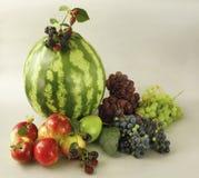 Surtido de la fruta del verano Foto de archivo libre de regalías