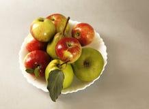 Surtido de la fruta del verano Imagenes de archivo