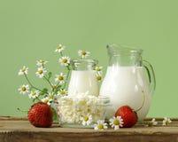 Surtido de productos lácteos (leche, mantequilla, crema agria, yogur) Imagen de archivo