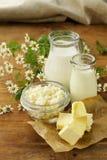 Surtido de productos lácteos (leche, mantequilla, crema agria, yogur) Fotos de archivo