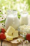 Surtido de productos lácteos (leche, mantequilla, crema agria, yogur) Foto de archivo libre de regalías