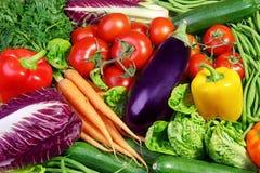 Surtido de verduras frescas Fotografía de archivo libre de regalías
