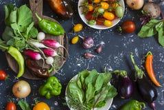 Surtido de verduras frescas - tomates, rábanos, berenjena, remolachas, pimientas, ajo, cebolla, espinaca Punto negro Imagenes de archivo
