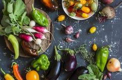Surtido de verduras frescas - tomates, rábanos, berenjena, remolachas, pimientas, ajo, cebolla, espinaca Punto negro Fotos de archivo
