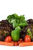 Surtidos vegetales con la planta aromática Imagen de archivo