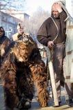 Surva dräktbjörn-ledare björn Mechkar Arkivfoton