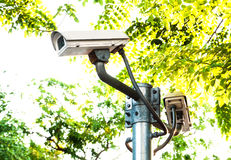 Surveillance camera or cctv on natural green background Stock Photography