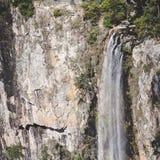 Surveillance de cascade Photos stock