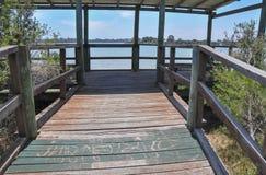 Surveillance de Coogee de lac Images stock