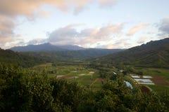 Surveillance de vallée de Hanalei photographie stock libre de droits