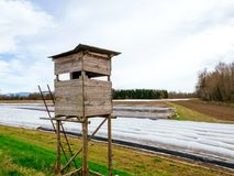 Surveillance hunting chalet next to asparagus plantation field. In rural area with multiple rows covered with sun-protecting foil during winter spring - modern Stock Photography
