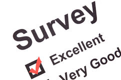 Survey. Page on white background royalty free stock photography